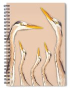 Five Herons Spiral Notebook