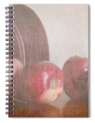 Five In A Row Spiral Notebook