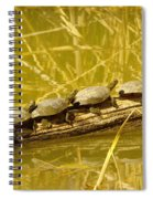 Five Turtles On A Log Spiral Notebook