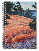 Flagging Pines Spiral Notebook