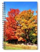 Flamboyant Autumn Spiral Notebook