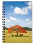 Flamboyant Spiral Notebook