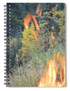 Flame Colored Fall.  Spiral Notebook