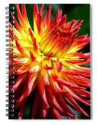 Flame Tips Spiral Notebook