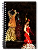 Flamenco Series #6 Spiral Notebook