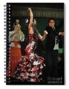Flamenco Series No 13 Spiral Notebook