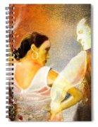 Flamencoscape 10 Spiral Notebook