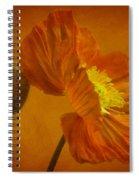 Flaming Beauty Spiral Notebook