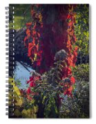 Flaming Beauty Spiral Notebook