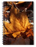 Flaming Leaves Spiral Notebook