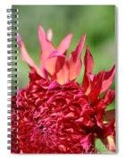 Flaming Petals Spiral Notebook