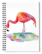 Flamingo Dip Spiral Notebook