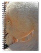 Flamingo Eye Spiral Notebook