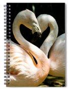 Flamingo Heart Spiral Notebook
