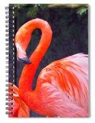 Flamingo In The Wild Spiral Notebook