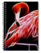 Flamingo Portrait Fractal Spiral Notebook