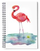 Flamingo Pose Spiral Notebook