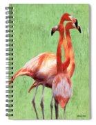 Flamingo Twist Spiral Notebook