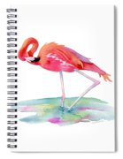 Flamingo View Spiral Notebook