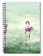 Flamingos In Camargue 02 Spiral Notebook