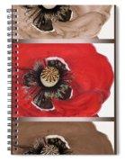 Flanders Poppy Triptych Spiral Notebook