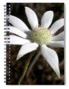 Flannel Flower Spiral Notebook