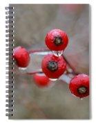 Flash Freeze Spiral Notebook