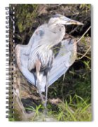 Flasher In The Park Spiral Notebook