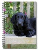 Flat-coated Retriever Puppy Spiral Notebook