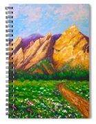 Flat Iron Colorado Spiral Notebook