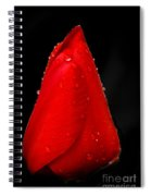 Floating Red Tulip Spiral Notebook