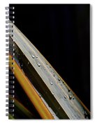Flax Droplets Spiral Notebook