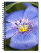 Flax Flower Spiral Notebook