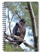 Fledged Spiral Notebook