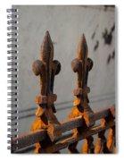 Fleur-de-lis - Cast Iron Spiral Notebook