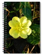 Fleur Jaune Couverte De Rosee Spiral Notebook