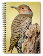 Flicker Spiral Notebook