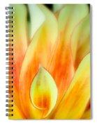 Flickering Petals Spiral Notebook