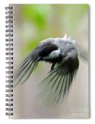 Flight II Spiral Notebook