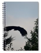 Flight Of The Black Crow Spiral Notebook