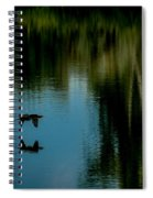 Flight Of The Cormorant Spiral Notebook