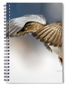Flight Of The Mallard Spiral Notebook