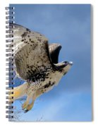 Flight Of The Red Tail Spiral Notebook
