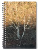 Flint River 12 Spiral Notebook