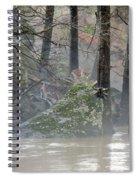 Flint River Rising Spiral Notebook