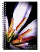 Flirtation Spiral Notebook