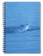 Floating Along  Spiral Notebook