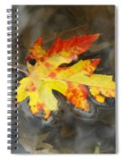 Floating Autumn Leaf Spiral Notebook