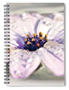 Floating Daisy Spiral Notebook