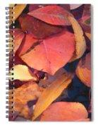 Floating Leaves Spiral Notebook